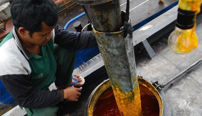 Legislator Riau Ajak Mahasiswa Suarakan DBH CPO
