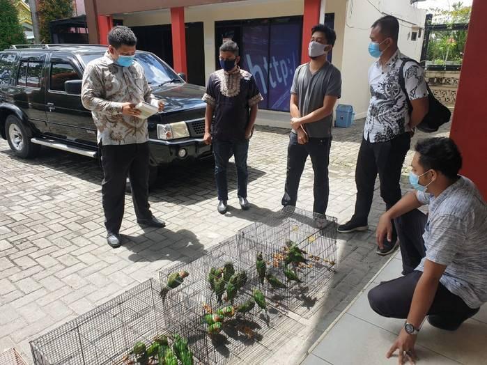 Jual Burung Dilindungi, Oknum ASN Pemprov Riau Ditangkap Polda Riau
