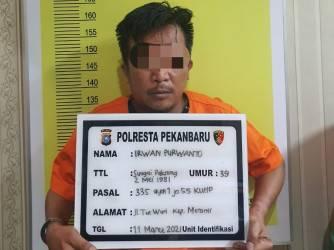 Pelaku Teror Kepala Anjing Rumah Kejati Riau Terungkap