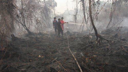 BMKG: Terpantau Ada 26 Titik Panas di Riau