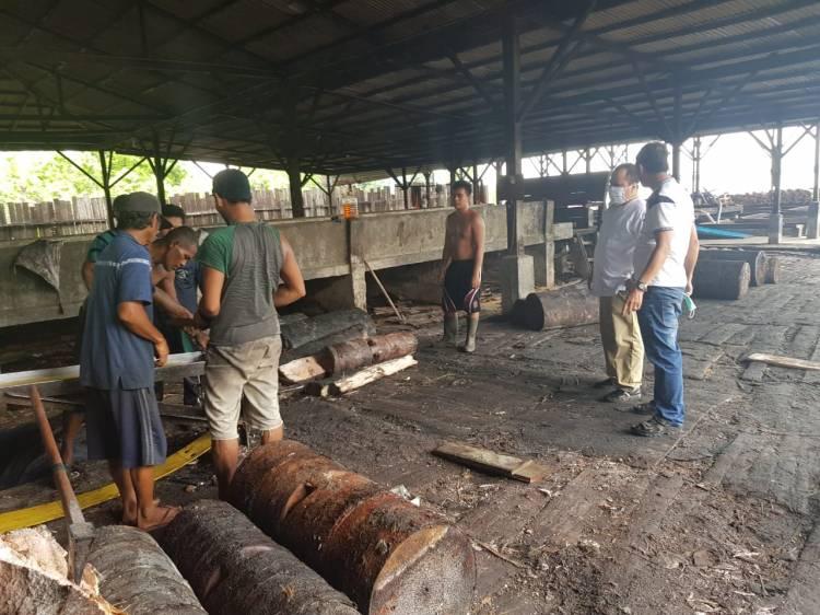 Bupati Meranti Tinjau Produksi Kilang Sagu Saat Pandemi Covid 19