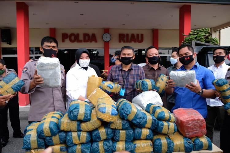 Polda Riau Sita 100 Kg Ganja Asal Aceh, Hendak Ditukar Sabu di Perbatasan Malaysia