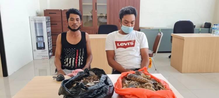 Polda Riau Ringkus Dua Pria Penjual Sisik Tenggiling