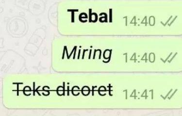 Cara Ubah Huruf di WhatsApp Jadi Miring, Tebal, dan Dicoret