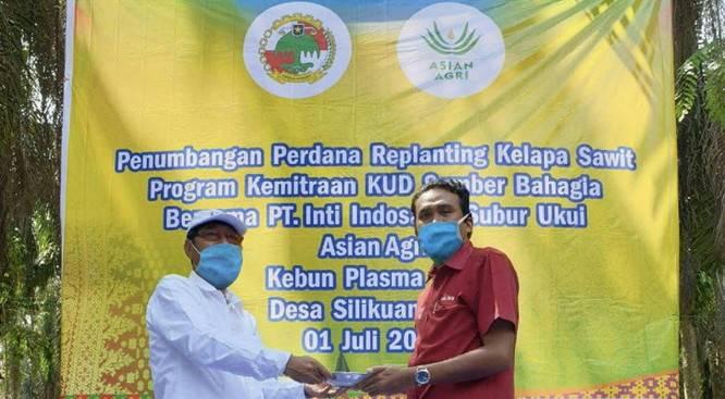 BPDPKS Kucurkan Puluhan Miliar untuk Replanting Kebun Sawit Petani