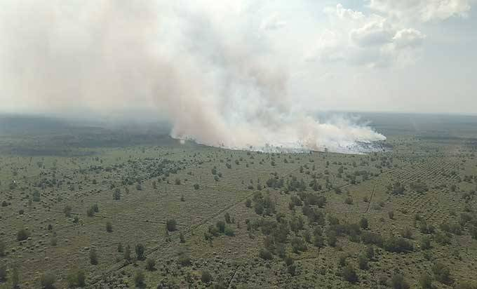Hotspot di Riau Terdeteksi 15 Titik