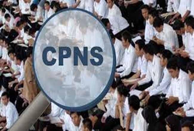 Pemerintah Bakal Kembali Buka Seleksi CPNS pada 2021