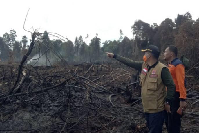 Polda Riau Tangkap 24 Pelaku Pembakar Lahan