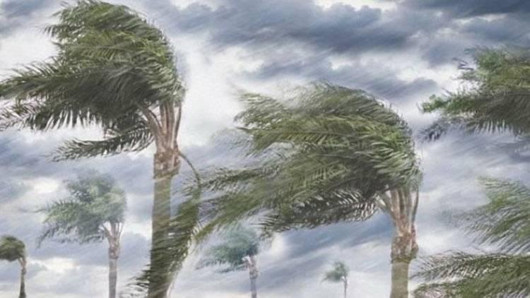 BMKG: Hujan Disertai Petir dan Angin Kencang akan Mengguyur Riau