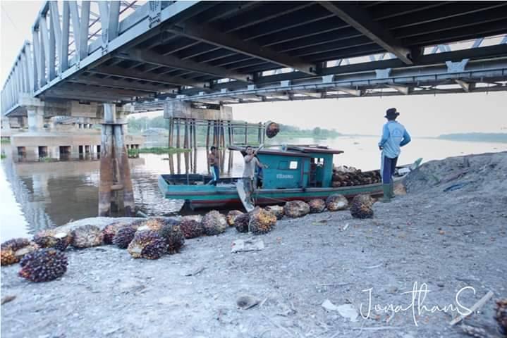 Ekspor Minyak Sawit Ke China dan India Melorot
