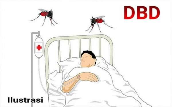 Akibat DBD, 33 Warga Riau Meninggal Dunia